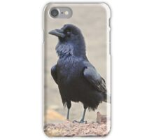 Stark Raven' Mad iPhone Case/Skin
