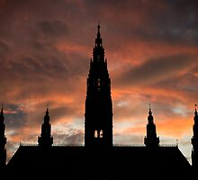 Rathaus by Thomas Fitzgerald