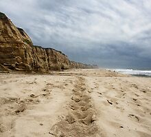 Trails in the Sand by SL Van Geest
