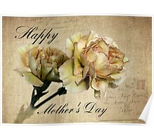 Mother's Day Carnations Poster