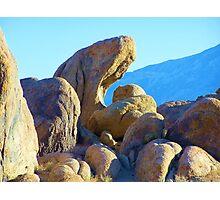 Rock eater Photographic Print