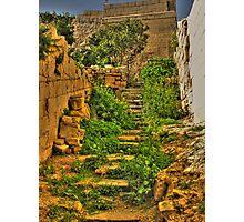 Mdina Garden Steps Photographic Print