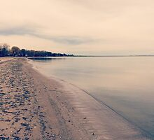 Lake Huron by Misty Coss