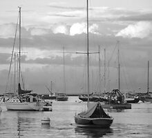 Harbor Sailboats and Fishing Boats by Mary-Anne Ganley