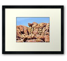 Pelican Rock Framed Print