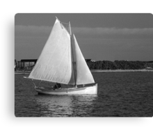 Evening Sail in a Cat Boat Canvas Print