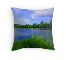 Moscow Water Throw Pillow