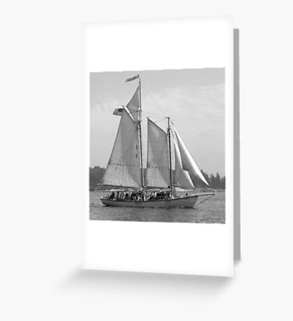 Windjammer Sailing in Booth Bay  Greeting Card