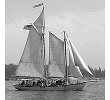Windjammer Sailing in Booth Bay  Photographic Print