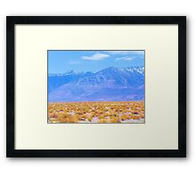 Horse Shoe Meadows Road mid day Framed Print