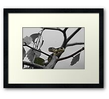 Select colouring Framed Print