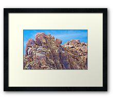 Puma Rock Framed Print