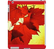 RED NOVEMBER iPad Case/Skin
