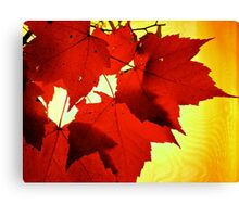 RED NOVEMBER Canvas Print