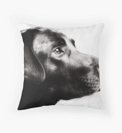'Dapper' Throw Pillow