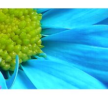 Electric Blue Photographic Print