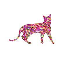 Kaleidoscopic Cat by cornuscreative