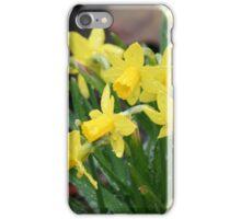 I'm springin' in the rain... iPhone Case/Skin