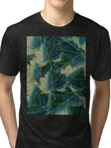 Leaves drawing  Tri-blend T-Shirt