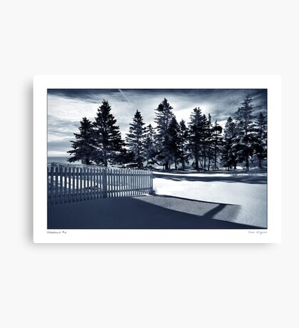 Fence Shadow Canvas Print