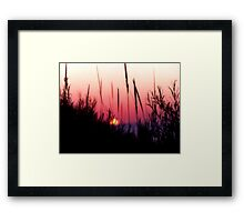 Sunset in Beach Grass II Framed Print