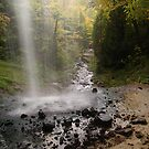 Munising Falls by Megan Noble