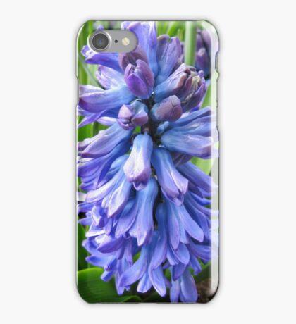Blue Hyacinth Beauty iPhone Case/Skin