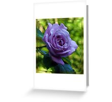 Blue Moon Rose in Mirrored Frame Greeting Card