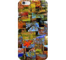Autumn Dreams iPhone Case/Skin