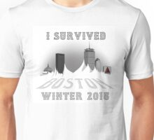 I Survived Boston Winter 2015 Unisex T-Shirt