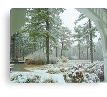 Snow Scene  from The Gazebo  Metal Print