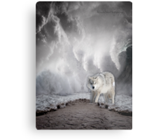Wolf in the Middle of a Storm Metal Print