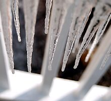 Icicles by xPressiveImages
