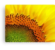 Sunny Face  Canvas Print