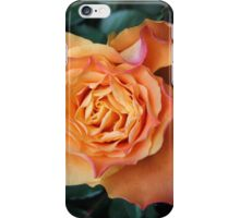 Soft and Gentle Rose iPhone Case/Skin