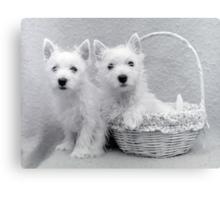 the Puppy Basket Canvas Print
