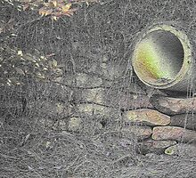 The pipe by Steve  Woodman