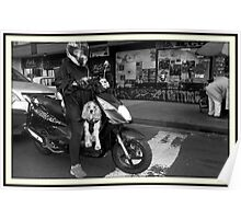 Dog on a motorcycle Poster