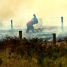 Roadside Fire  by Tom Newman