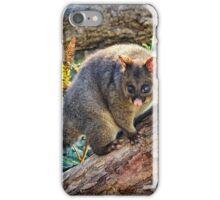 Bushtail Possum iPhone Case/Skin
