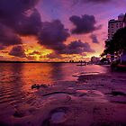 Sunrise-2066 by Barbara Harris