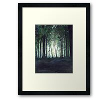 Journey to the Havens Framed Print