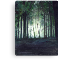Journey to the Havens Canvas Print