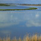 Reflective Clouds by AmyRalston