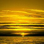 Golden Sunset by ienemien