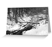 A Natural Bridge.... in Black and White..... Greeting Card