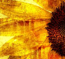 Golden Oil Sunflower  by Ian Mooney