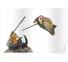 weasel riding woodpecker versus frog riding beetle Poster