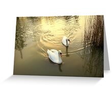 Perfect Partners .. Greeting Card