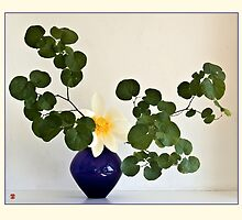 Ikebana-058 Greeting Card by Baiko